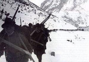 alpinicolonna