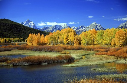 yellowstone-national-park-420x0